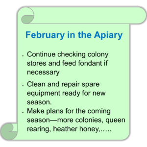 Apiary in February