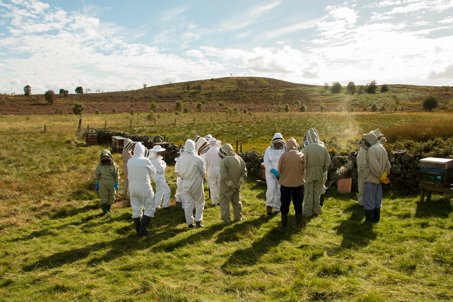 Apiary meeting at the heather moor
