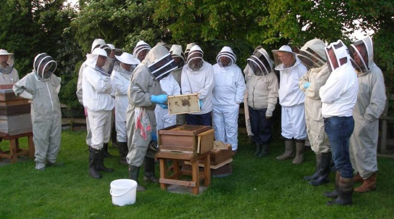 Beekeeping meeting